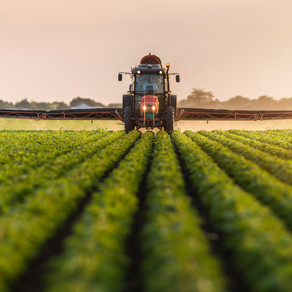 A BRIEF HISTORY OF PESTICIDE USE