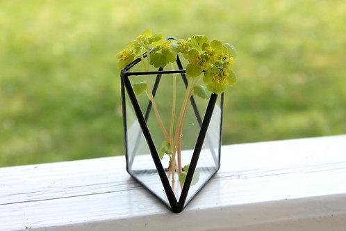 геометрическая ваза, ваза для цветов, лофт