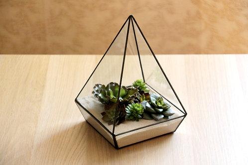флорариум, флорариум купить, флорариум спб, terrarium, glass flowers