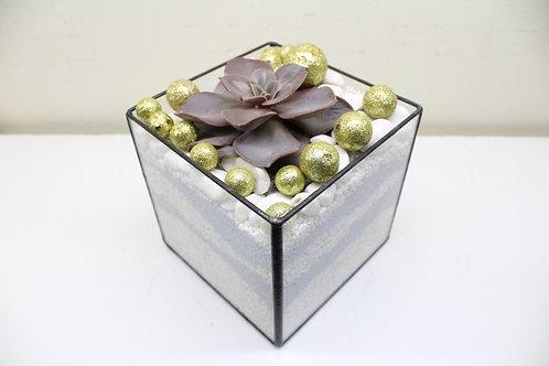 флорариум, флорариум с кактусом и суккулентами, купить флорариум спб, новогодний флорариум, флорариум новый год,