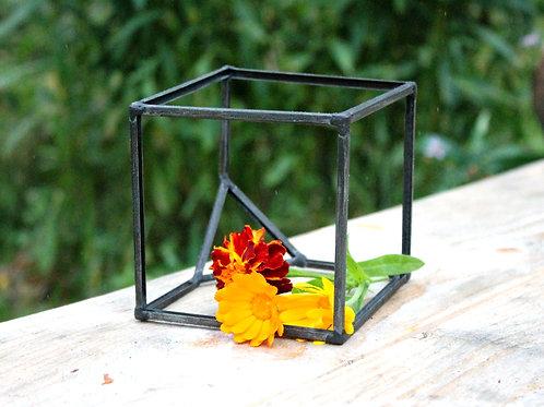 Куб флорариум