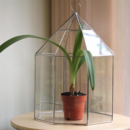 флорариум купить, ваза для флорариума клетка купить, геометрические флорариумы купить, флорариум купить питер, тепличка