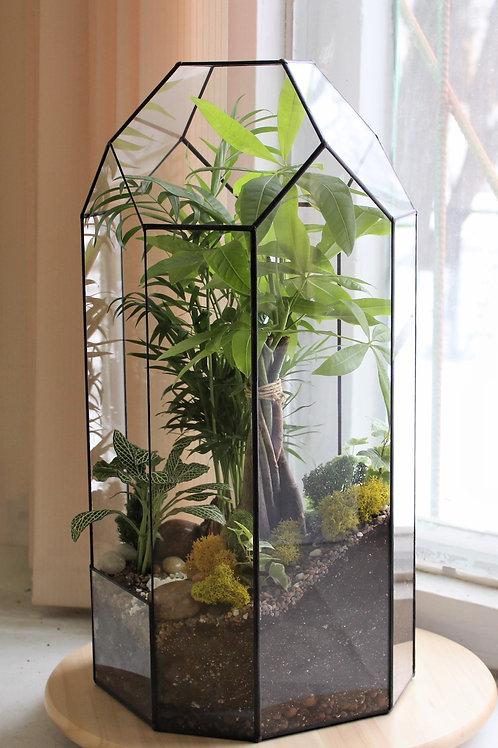 Большой флорариум, terrarium, green garden, подарок руководителю, флорариумы террариумы купить спб