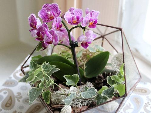 glass flowers, glass terrarium