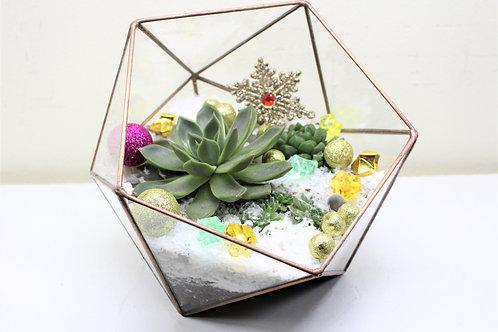 флорариум, флорариум с кактусом и суккулентами, terrarium, succulents, florarium, новогодний флорариум, флорариум новый год