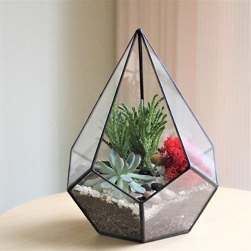 флорариум с суккулентами купить, флорариум с кактусом, террариум с растениями спб, фитодизайн, мини сад суккуленты, флорариум