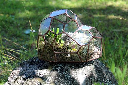 флорариум фриформ, геометрический флорариум, флорариум с суккулентами, succulent terrarrium, glass art, green garden,