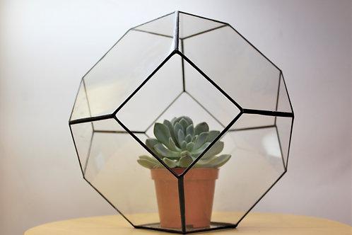 флорариум, геометрический флорариум шар клубок, флорариумы оптом, магазин флорариумов, флорариумы спб, флорариум купить,