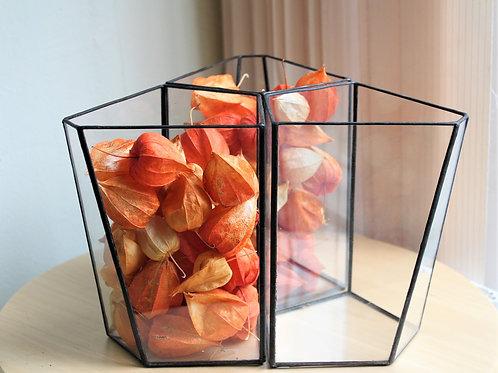 флорариум, ваза для флорариума, геометрические флорариумы, террариум, флорариум купить спб, купить флорариум, геометрический