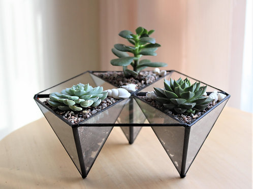 terrarium, succulents terrarium, florarium, mini garden, флорариум с суккулентами купить спб, мини садик с эхеверией, спб