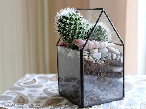 флорариум, флорариум спб, купить флорариум спб, флорариум кактус, флорариум домик, флорариумы оптом, succulents