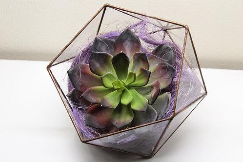 terrarium, succulents, real touch flowers, florarium, флорариум с суккулентами купить спб, искусственные суккуленты