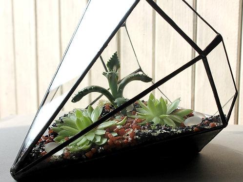 Флорариум Кристалл с суккулентами,  23*15 см.