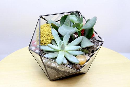 флорариум с суккулентами купить спб, суккуленты спб, цветы спб с доставкой, флорариум с доставкой