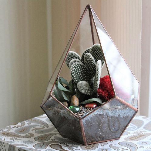 флорариум с кактусом, флорариум с суккулентами купить спб, мини садк геометрический тиффани спб питер купить