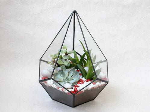 флорариум, флорариум спб, флорариум купить спб, флорариум с кактусами, флорариумы