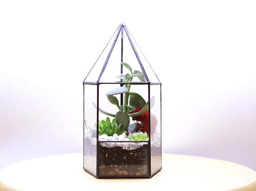 флорариум, флорариум с доставкой, флорариум с суккулентами, флорариум башня, флорариум кактус, флорариум купить спб