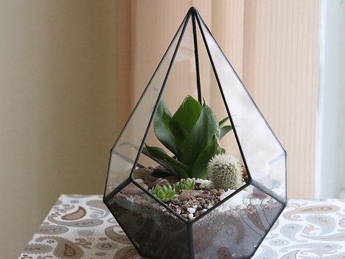 флорариум с сансевиерией, флорариум с кактусом, флорариум с уккулентами купить спб, террариум с растениями на заказ оптом спб