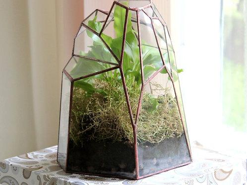 флорариум папоротник, флорариум спб, флорариум купить, glass flowers terrarium, florarium, geometric terrarium,  terrarium