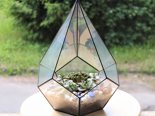 флорариум капля, флорариум с суккулентами, флорариум купить, terrarium, succulents, florarium