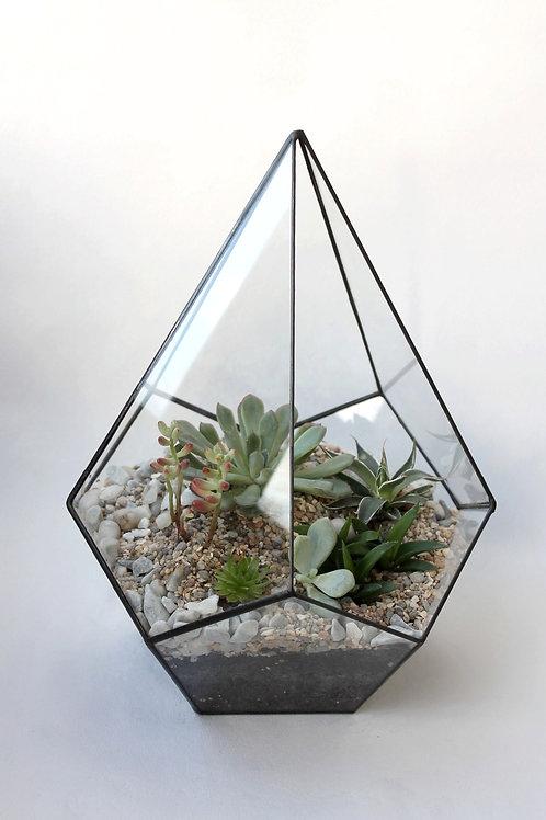 Флорариум Капля с суккулентами микс. Высота 32 см