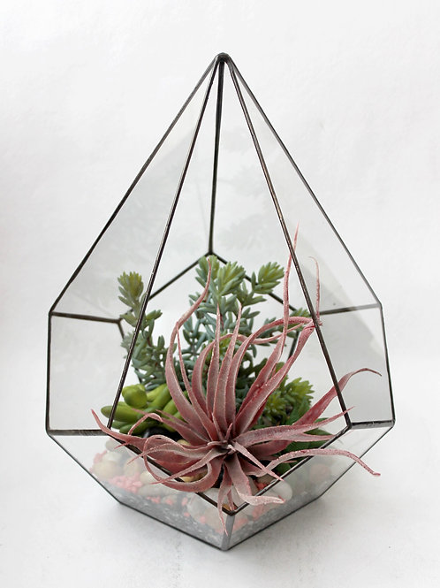 флорариум, флорариум купить, флорариум суккуленты, флорариум капля, флорариум искусственные растения, мини сад,
