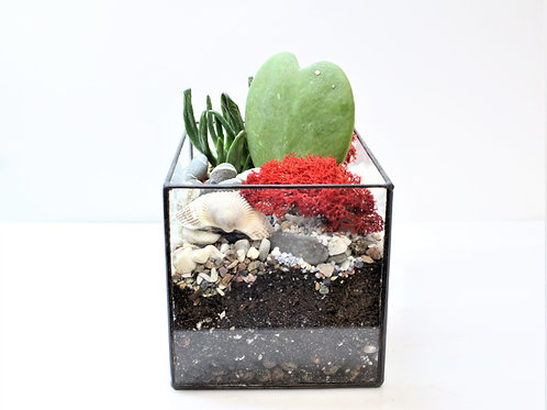 флорариум, terrarium, succulents terrarium, glass flowers, флорариум купить спб, флорариум с суккулентами