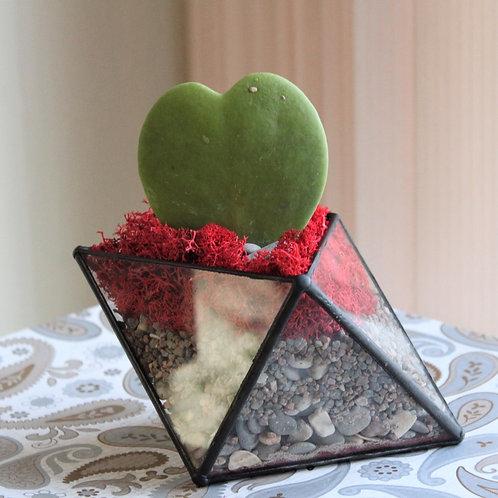Флорариум СЕРДЦЕ. День Всех Влюбленных. Подарок на 14 февраля