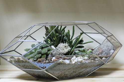 флорариум, большой флорариум, террариум с суккулентами, мини сад флорариум, суккуленты мини садик купить спб в наличии