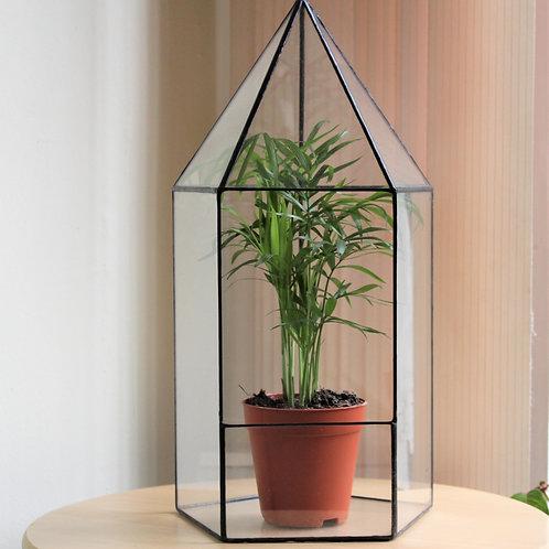 флорариум купить спб, геометрические флорариумы купить, террариум купить, ваза для флорариума купить спб