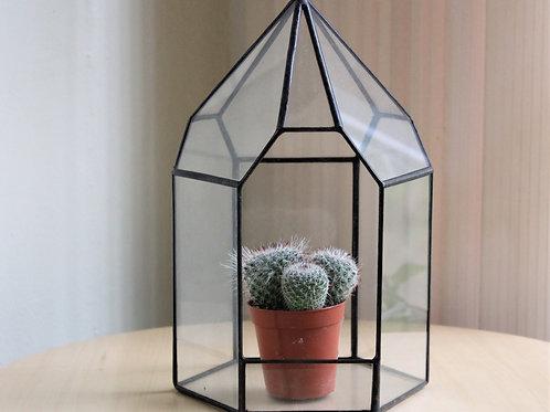 флорариум, флорариумы, ваза для флорариума, сосуд для флорариума