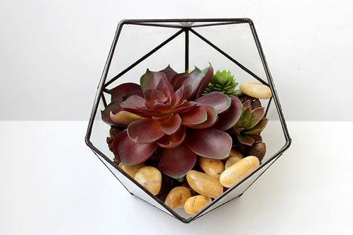 флорариум, флорариум купить, геометрические флорариумы
