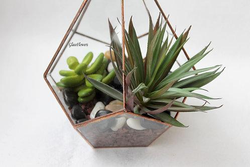 флорариум, флорариумы, флорариум купить , флорариум суккуленты спб, флорариум заказать, флорариум питер, террариум, мини сад
