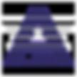 AU-Logo_edited.png