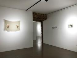 Sedução Mútua, na LAPSO Galeria, Setúbal, 2020