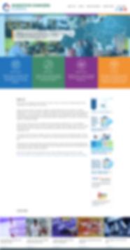 website wix 1.jpg