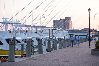 Morehead City Waterfront Charters.jpg