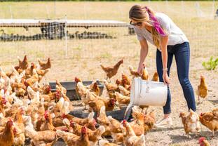 Farm to Table -1360.jpg