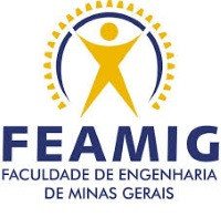 FEAMIG