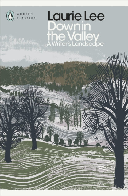 Down in the Valley : A Writer's Landscape