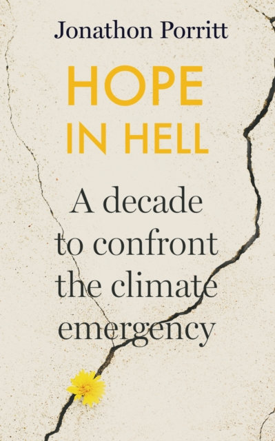 Hope in Hell : A decade to confront the climate emergency