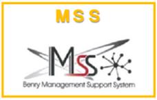 MSSロゴ.png