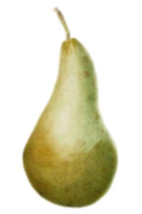 Green Pear_60984_edited_edited.jpg