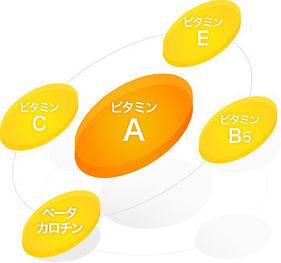 vitamin_img03.jpg