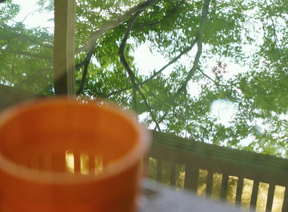 楓に囲まれた浴場