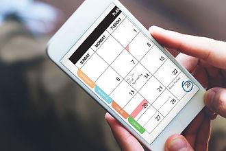 phone calendar.jpg