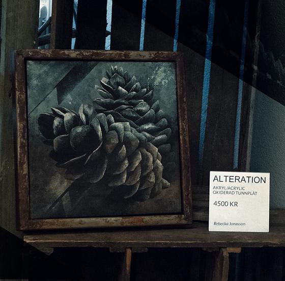 ALTERATION By Rebecka Jonasson