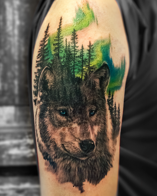 wolf with northern lights