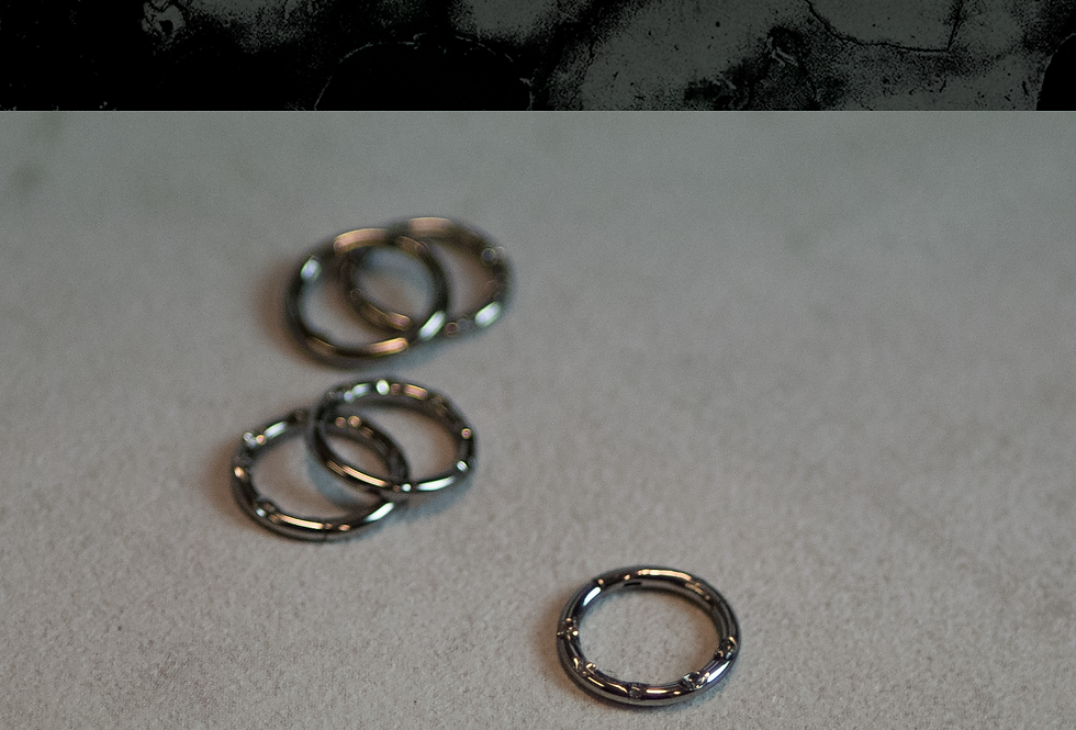 Titan Segment Closure Ring med Swarovski Crystals