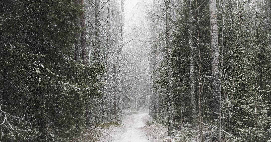 natur5_av_HeliBerg